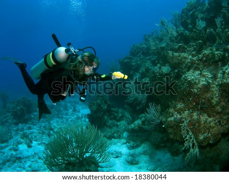 Diver exploring Reef with a Flashlight in the Caribbean - stock photo