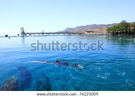 Diver floating in the Red sea with a dolphin against a fine sandy beach with a bungalow in a shade of palm trees and mountains in the distance - stock photo