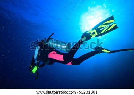 Diver in pink wetsuit and green fin - stock photo