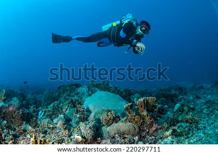 Diver is swimming above the coral reefs in Gili, Lombok, Nusa Tenggara Barat, Indonesia underwater photo. there are pillar blade hard coral reef