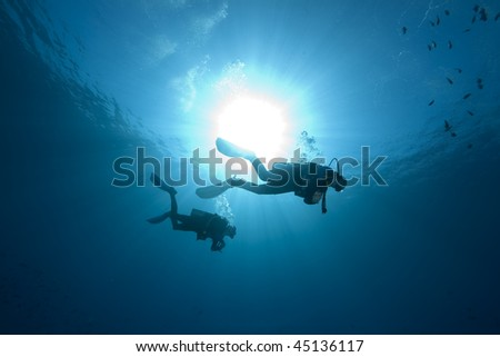 diver, ocean and fish - stock photo