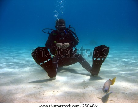 Diver sitting on sand looking at a fish. - stock photo