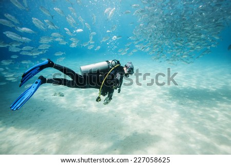 diver swimming in fish school in Dimakya island, Palawan, Philippines.