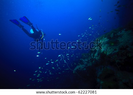 Diver swimming underwater - stock photo