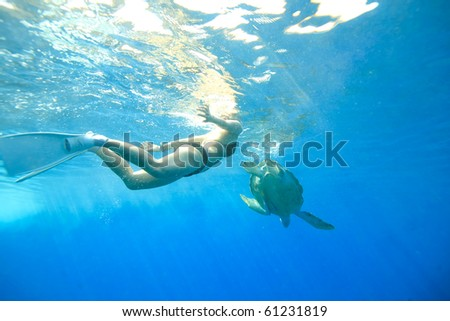 Diver swimming with turtle - stock photo