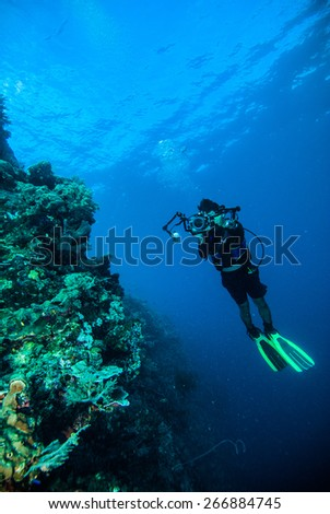 diver take a photo video upon coral kapoposang indonesia scuba diving - stock photo