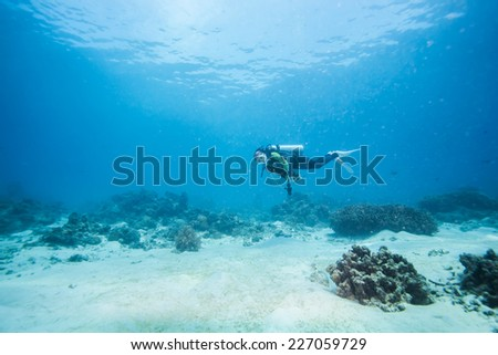 diver under water - stock photo