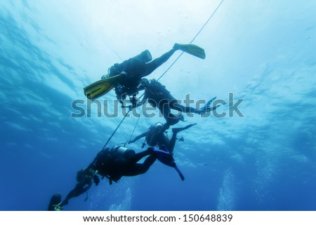 diver underwater and hold the rope