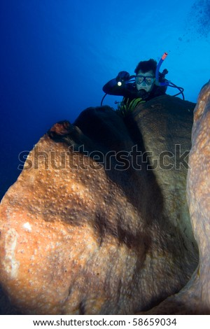 Diver with underwater light by coral reef - stock photo