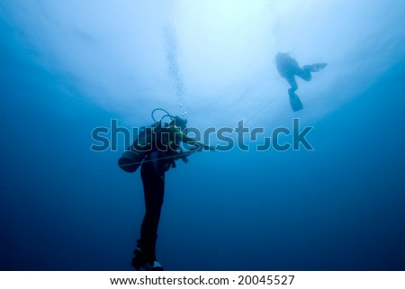 Divers ascending on an anchor line from the deep - stock photo