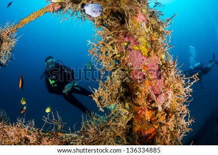 Divers explore the coral encrusted structure of an underwater shipwreck - stock photo