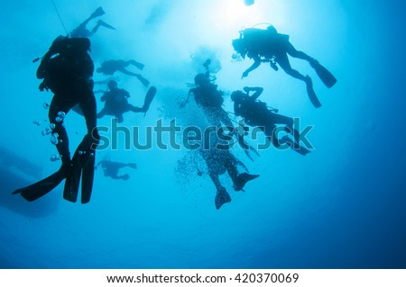 Divers go to the surface - stock photo