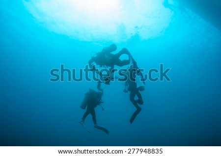 Divers going to the surface. - stock photo