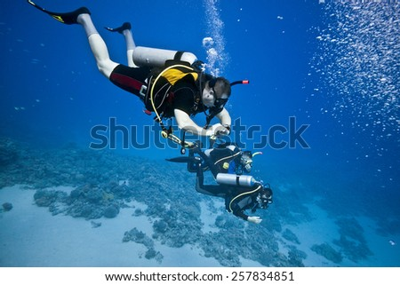 Divers on the coral reef - stock photo