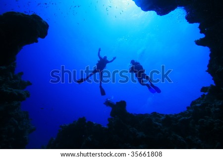 Divers silhouetted above an underwater canyon
