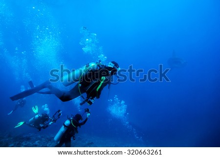 divers underwater - stock photo