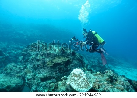 Divers underwater passing through coral reef.