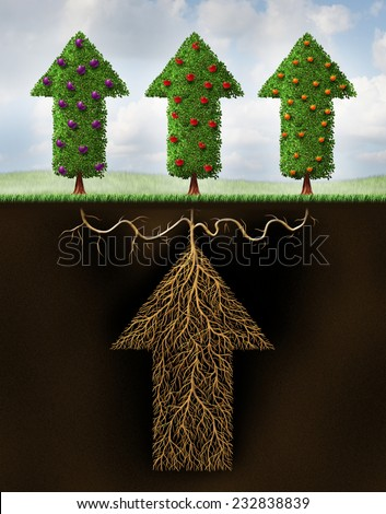 Diversified investing financial portfolio as a business metaphor for finance planning and wealth strategy to reduce the risk as an arrow root growing three types of fruit as a diversification symbol. - stock photo