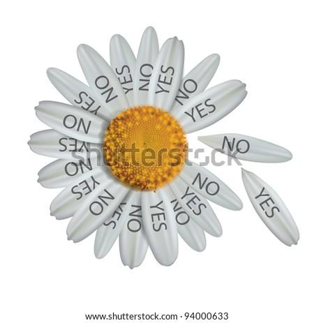Divine decision daisy: raster version - stock photo