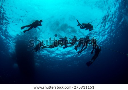 Diving in deep blue sea - stock photo