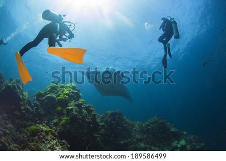 Diving with Manta - stock photo