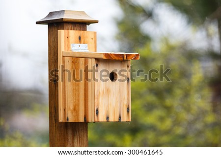 DIY wood birdhouse close up - stock photo