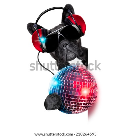 dj dog listening to music behind an empty and blank banner with a fancy disco ball and lights - stock photo