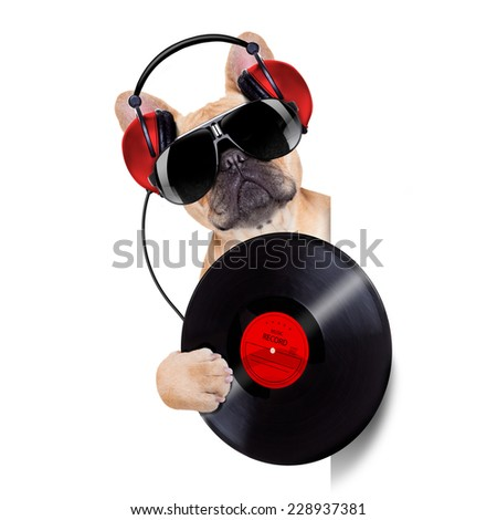 dj dog playing music record beside a white and blank empty banner or placard, isolated on white background - stock photo