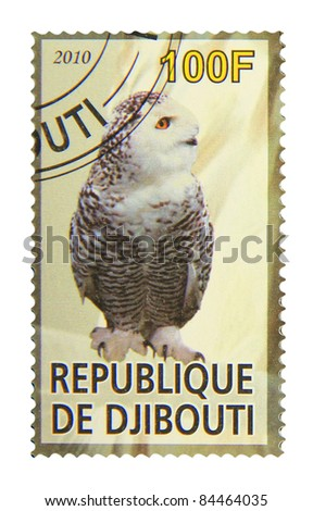 DJIBOUTI - CIRCA 2010: A stamp printed in Djibouti showing owl, circa 2010 - stock photo