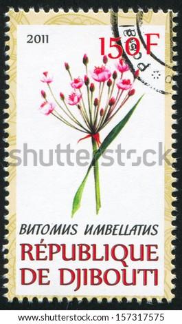 DJIBOUTI - CIRCA 2011: stamp printed by Djibouti, shows Butomus, circa 2011 - stock photo