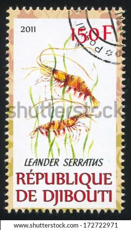 DJIBOUTI - CIRCA 2011: stamp printed by Djibouti, shows Palaemon serratus, circa 2011 - stock photo