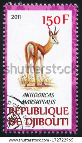 DJIBOUTI - CIRCA 2011: stamp printed by Djibouti, shows Springbok, circa 2011 - stock photo