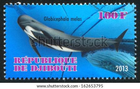 DJIBOUTI - CIRCA 2013: stamp printed by Djibouti, shows whale, circa 2013 - stock photo