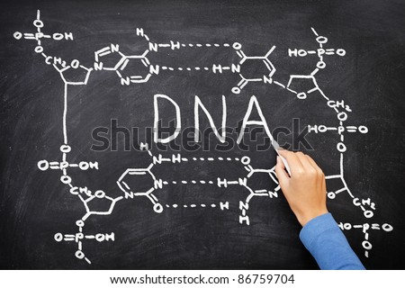 DNA blackboard drawing. Hand drawing chemical structure of DNA on black chalkboard with chalk. Chemisty and biology science education concept. - stock photo