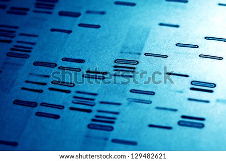 DNA fingerprints. - stock photo