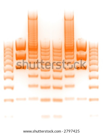 DNA separation - stock photo