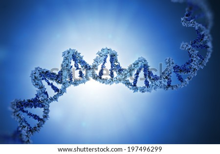 DNA strand model - genetics illustration - stock photo