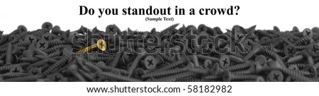 Do You Standout In A Crowd?  Suitable for website banner.  Macro of one brass screw in a pile of black screws isolated on white with copy space. Shallow DOF. - stock photo