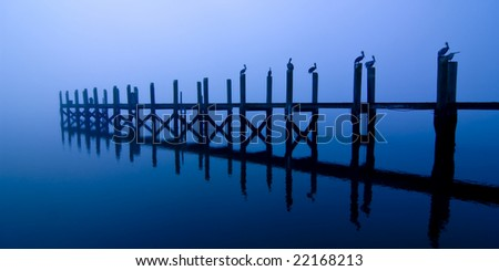 dock with pelicans roosting at night over water