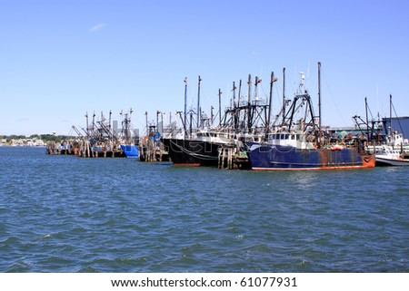 docked fishing boats in a harbor after returning with the catch of the day