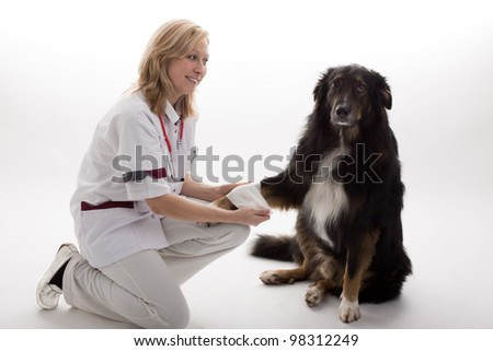 Doctor with dog - stock photo