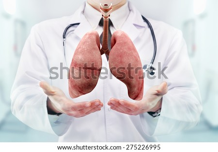 Doctor with stethoscope and lungs on the  hands in a hospital. High resolution.  - stock photo