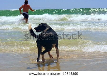 Dog and boy on big wave beach. Shot near Strand, Pringle/Bettys Bays, Western Cape, South Africa.