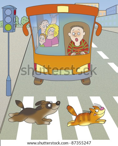 dog and cat run across the road at a red light at a crosswalk - stock photo