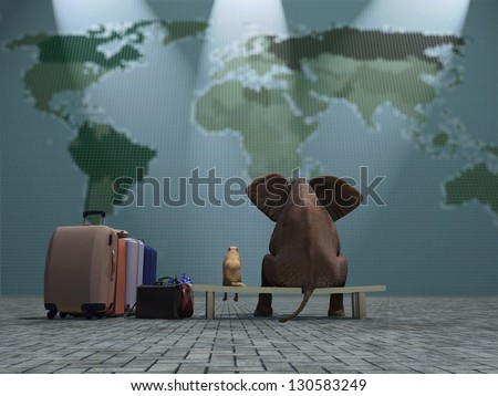 dog and elephant travel - stock photo