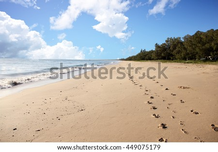 Dog and human foot prints along a sandy beach with a cloudy sky, queensland, australia - stock photo