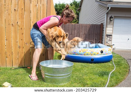 Dog Bath - stock photo
