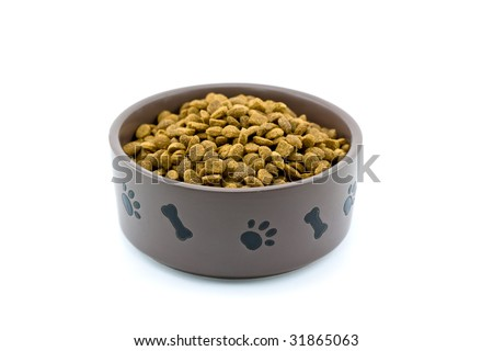 Dog Bowl with Food Isolated on White Background