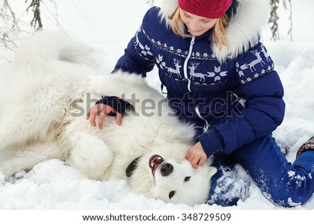 Dog breed Samoyed husky with girl outdoors. dog for a walk with his owner - stock photo