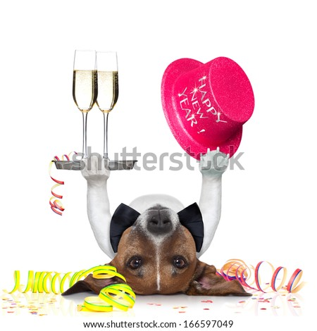 dog celebrating with champagne and a blue happy new year hat lying upside down - stock photo